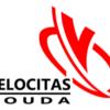 Gouda Goverwelle - Sport en ontspanning - Gymnastiekvereniging Velocitas