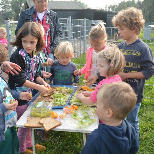 Gouda Goverwelle - Nieuws - Goverwelle - Wereld dierendag op de Dierenweide in Goverwelle